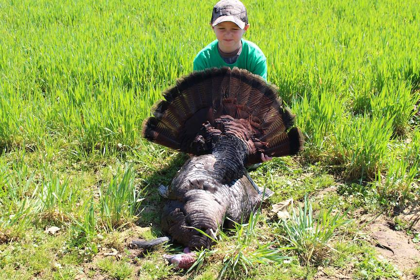 Turkey hunting guide virginia spring turkey guide fall for Virginia fishing license cost